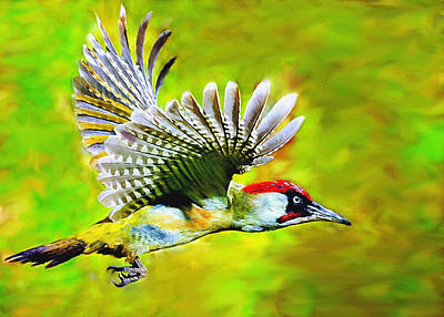 Brown White Sedona Trees Painting - Gila Woodpecker by Bob and Nadine Johnston