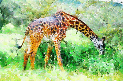 Giraffe Eating Grass Painting Print by George Fedin and Magomed Magomedagaev