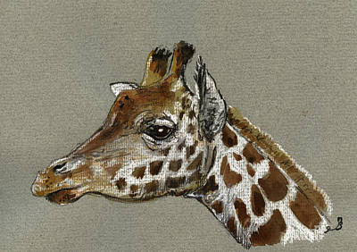 Giraffe Head Study Original by Juan  Bosco