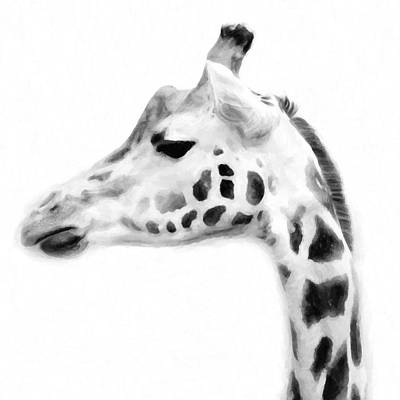 Isolated On White Mixed Media - Giraffe On White Background by Toppart Sweden