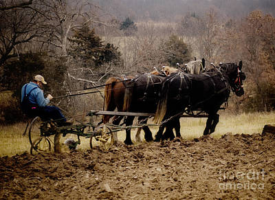 Man.farmer Photograph - Give Thanks For The Beauty Of The Earth by Leslie Heemsbergen
