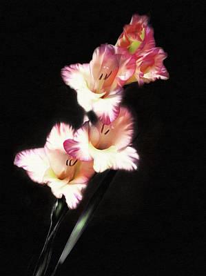 Flower Photograph - Gladiola Delight by Georgiana Romanovna