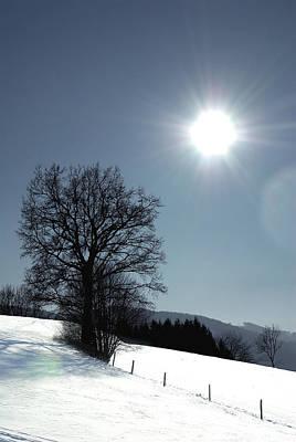 Styria Photograph - Glance by Antonio Castillo