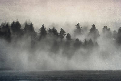 Glimpse Of Mist And Trees Print by Carol Leigh