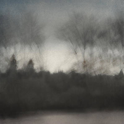 Glimpse Of The Willamette Print by Carol Leigh