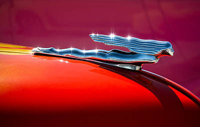 Car Mascot Digital Art - Glinted Beauty by Douglas Pittman