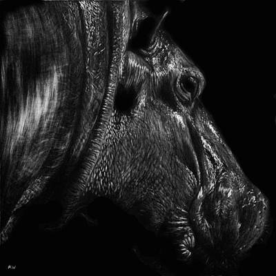 Hippopotamus Drawing - Glistening by Heather Ward