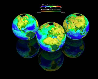 Energy Conversion Photograph - Global Chlorophyll Distribution by Carlos Clarivan