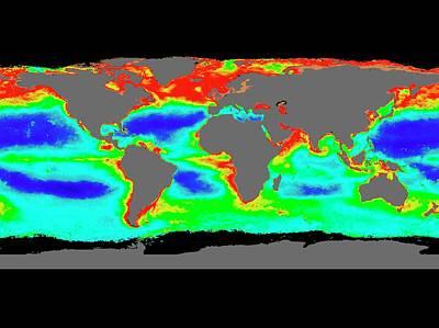 Global Chlorophyll Levels Print by Nasa/gsfc-svs/seawifs/geoeye