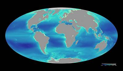 Global Phytoplankton Levels Print by Nasa/seawifs/geoeye