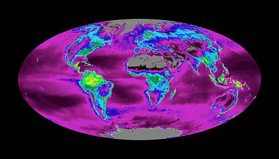 Net Photograph - Global Productivity Levels by Nasa/modis Science Team