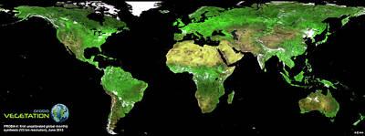 Mosaic Photograph - Global Vegetation by Esa