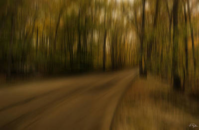 Gloomy Autumn Print by Lourry Legarde