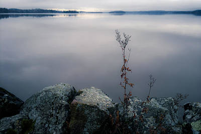 Lake Photograph - Gloomy November by Ari Salmela