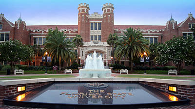 Go Noles Print by Paul  Wilford