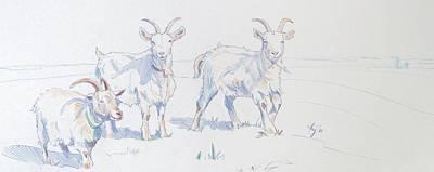 Goats Print by Mike Jory