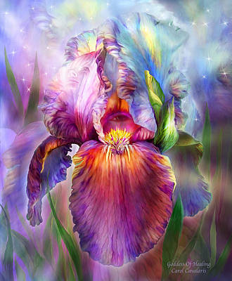 Iris Mixed Media - Goddess Of Healing by Carol Cavalaris