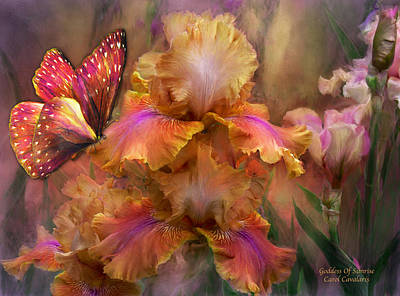 Iris Mixed Media - Goddess Of Sunrise by Carol Cavalaris