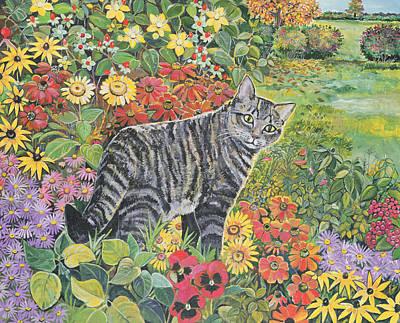 Tabby Cat Photograph - Going My Way? by Hilary Jones