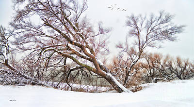 Going Softly Into Winter Print by Betty LaRue