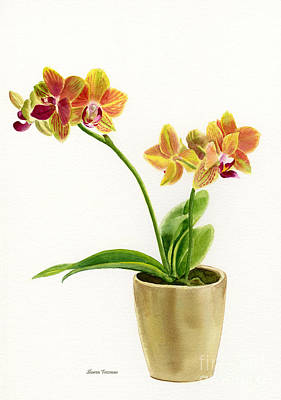 Gold And Green Orchid Print by Sharon Freeman
