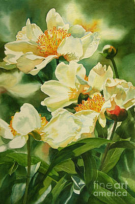 Blooming Painting - Gold And White Peonies by Sharon Freeman