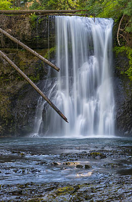 State Parks In Oregon Photograph - Gold In The River by Loree Johnson