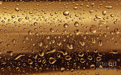 Droplet Photograph - Gold Plate With Water Drops by Michal Bednarek