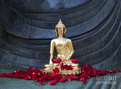 Golden Buddha Print by Tim Gainey