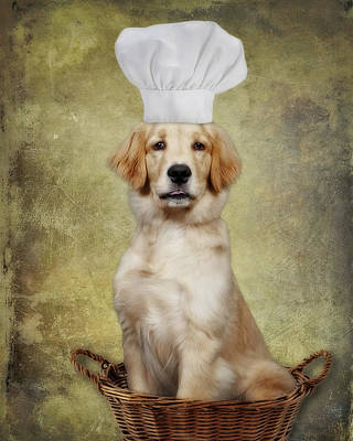 Hat Photograph - Golden Chef by Susan Candelario
