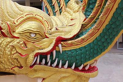 Dragon Photograph - Golden Dragon by Michael Kim