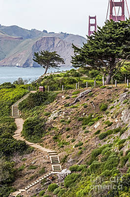 Golden Gate Trail Print by Kate Brown
