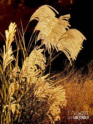 Golden Harvest Print by Carol F Austin