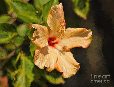 Morning Light Painting - Golden Hibiscus Morning by Deborah Benoit