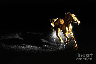 Golden Horse Print by William Voon
