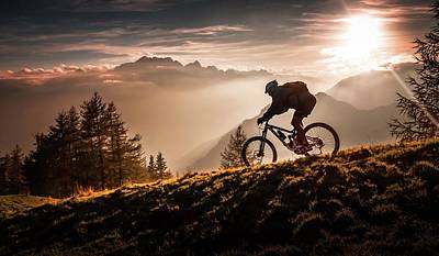 Sports Photograph - Golden Hour Biking by Sandi Bertoncelj