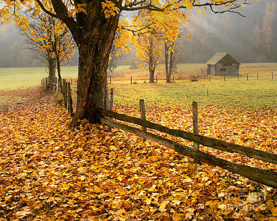 Styria Photograph - Golden Hours by Edmund Nagele