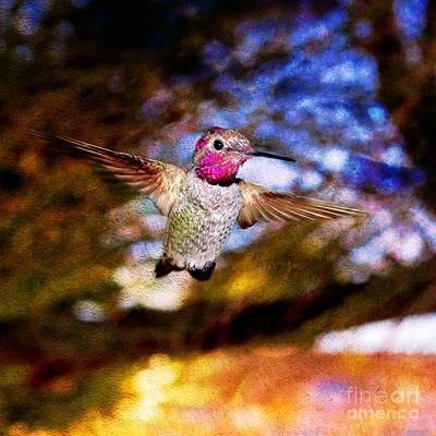 Duchess Digital Art - Golden Light Hummingbird Flight by Jeanette Brown