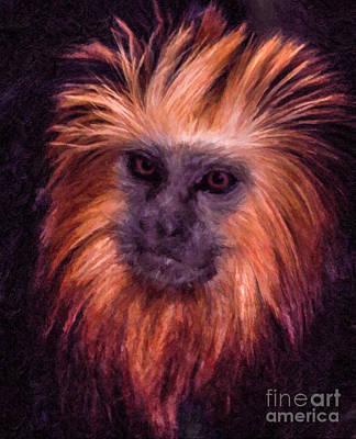 Monkey Digital Art - Golden Lion Tamarin by Liz Leyden