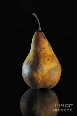 Golden Pear Print by Dan Holm