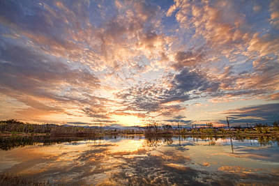 Corporate Art Photograph - Golden Ponds Scenic Sunset Reflections 3 by James BO  Insogna