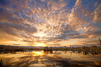 Golden Ponds Scenic Sunset Reflections 5 Print by James BO  Insogna