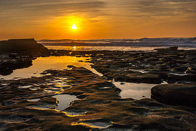 Golden Pools Print by Peter Tellone