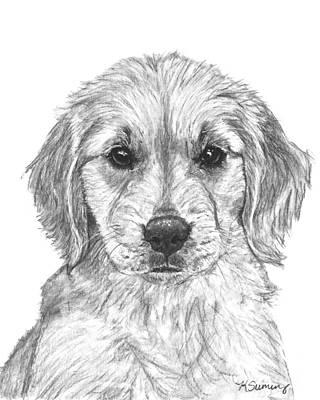 Golden Retriever Drawing - Golden Retriever Jessie Puppy by Kate Sumners