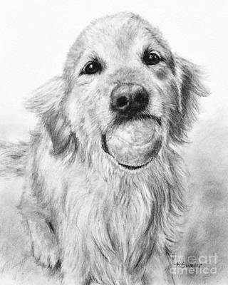 Purebred Drawing - Golden Retriever With Ball by Kate Sumners