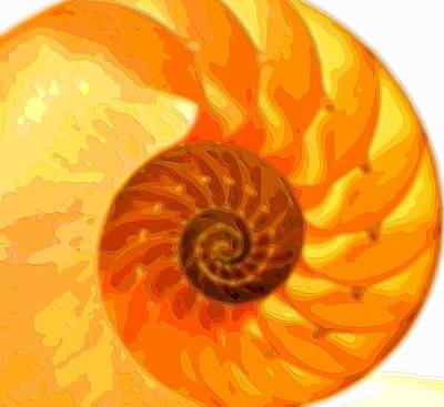 Golden Spiral Layer Art Print by Mary Clanahan