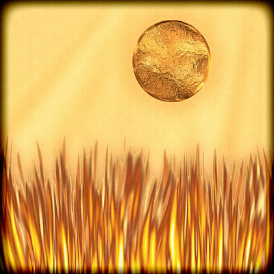 Wendy J. St. Christopher Digital Art - Golden Summers by Wendy J St Christopher