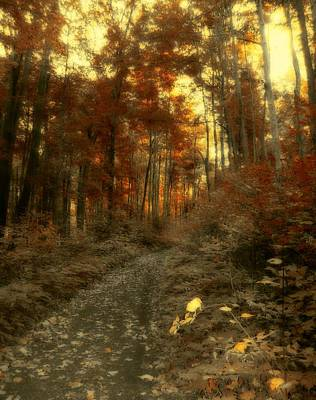Golden Walk Print by Gothicrow Images