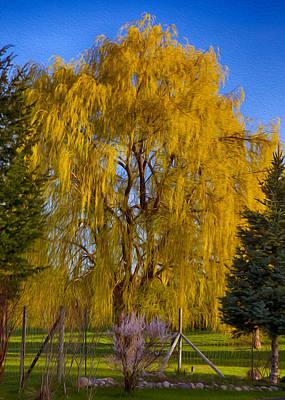 Golden Willow Tree Print by Omaste Witkowski
