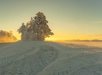 Sunset In Norway Photograph - Golden Winter by Rose-Maries Pictures